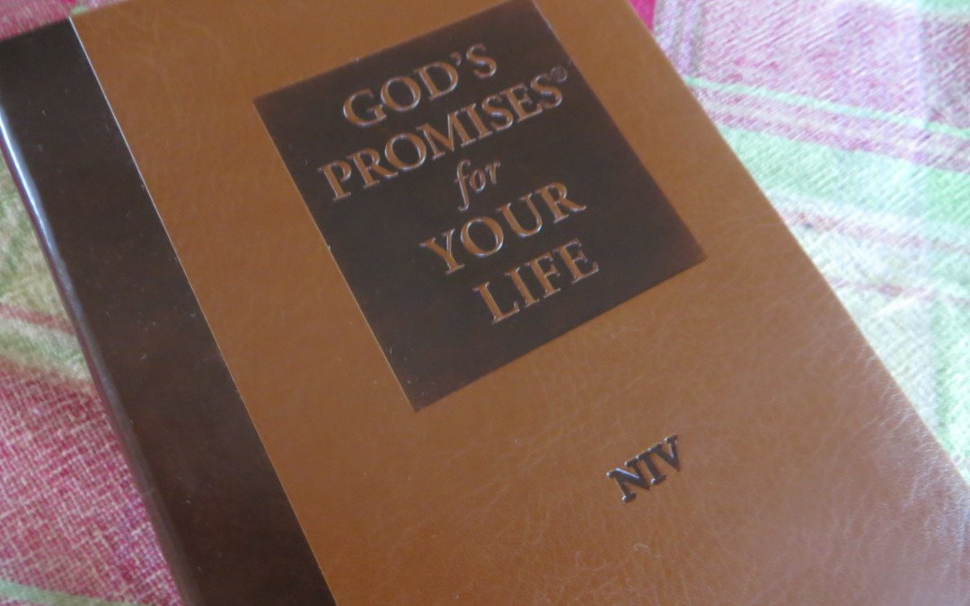 Trusting God when life hurts, Act III: Looking in the word